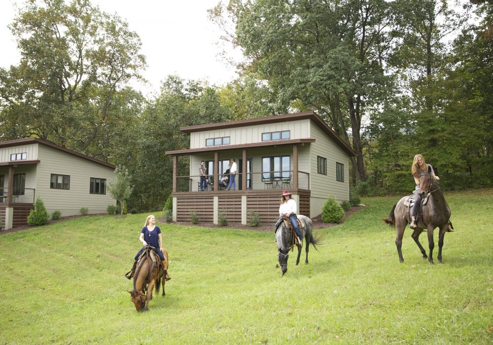 vineyard horseback trail rides