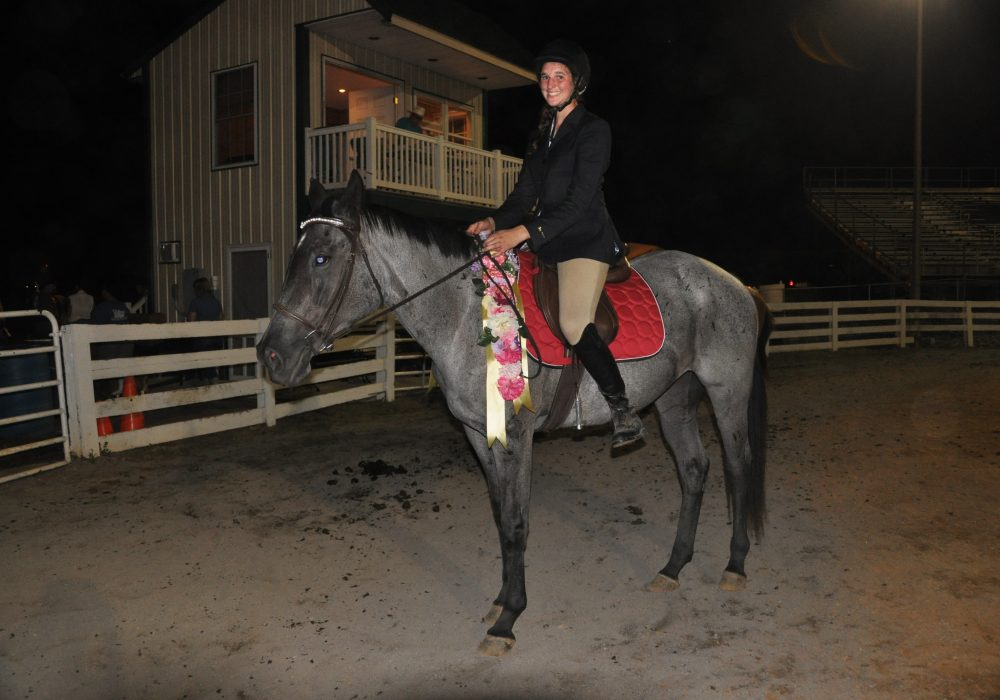 horseback riding lessons central virginia